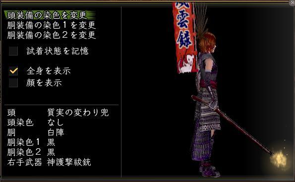 20100402_神護撃祓銃