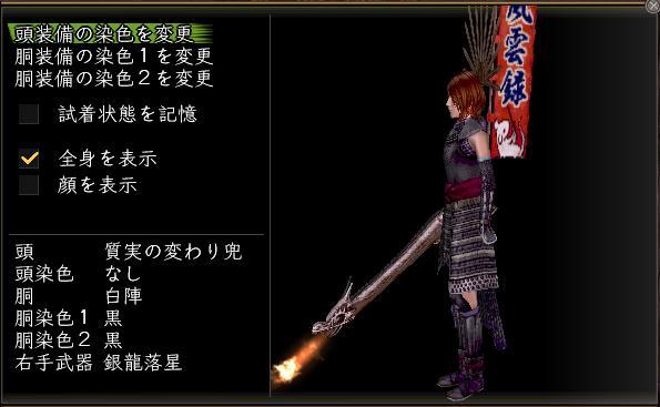 20100402_銀龍落星