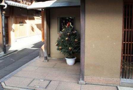 先斗町のクリスマスツリー_H26.12.06撮影
