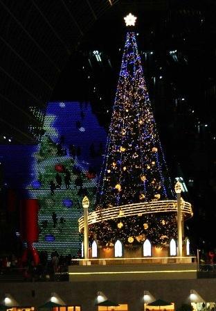 Wクリスマスツリー_H26.12.06撮影