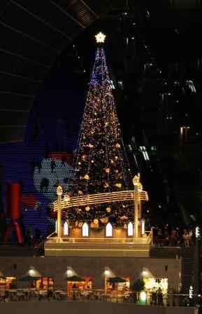 東広場からクリスマスツリー_H26.12.06撮影