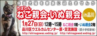 shinagawa32_320x120.jpg