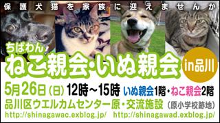 shinagawa35_320x180.jpg