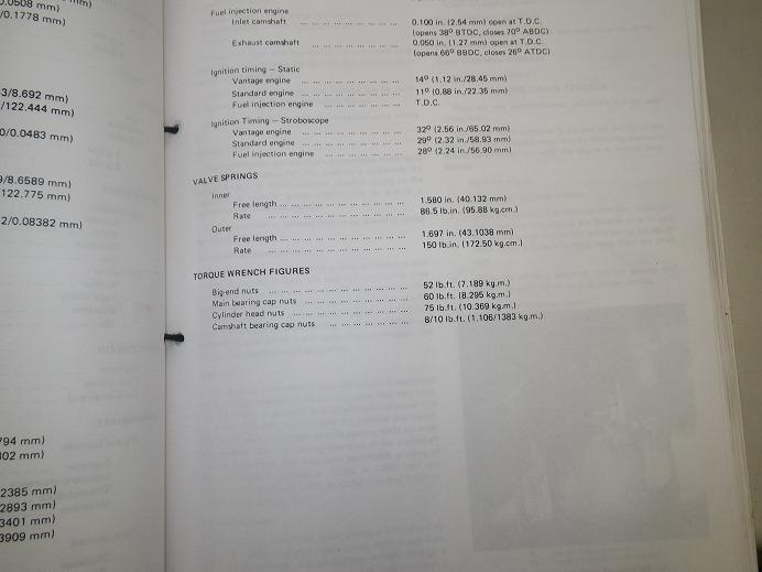 IMGP4634.jpg