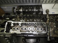 IMGP4944.jpg