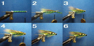 tying_tube_greenwasp