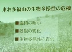 141030hashimoto-06.jpg