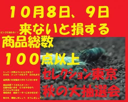 RIMG3417111.jpg