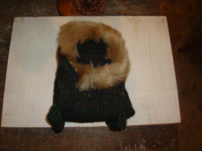 ファー付きセーター前の2