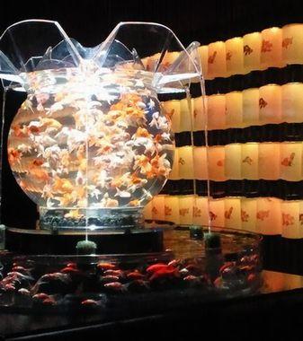 金魚展_2