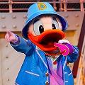 Piper duck