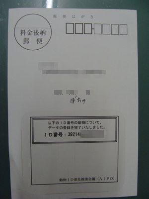 110824-31.jpg