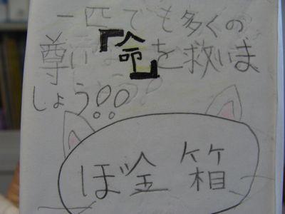 募金会 009