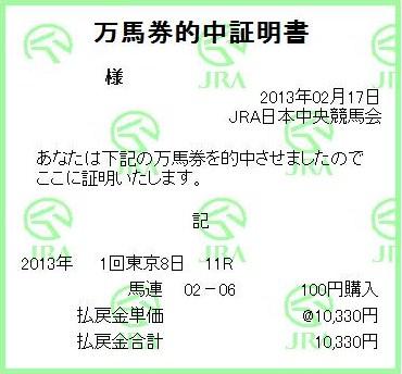 20130217東京11R