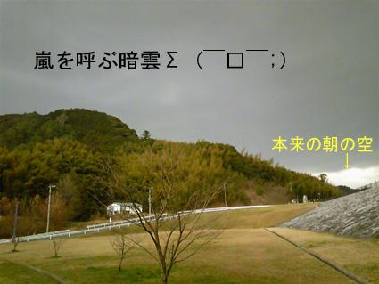 原っぱの空が真っ暗に?(ToT)