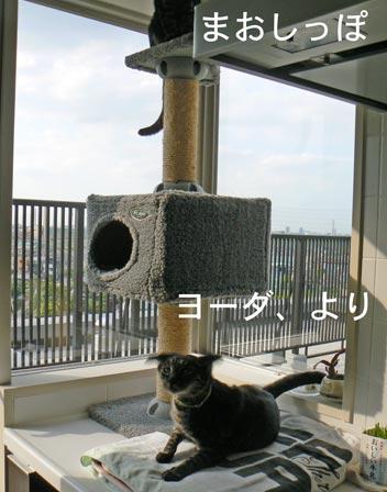 e-dayori.jpg