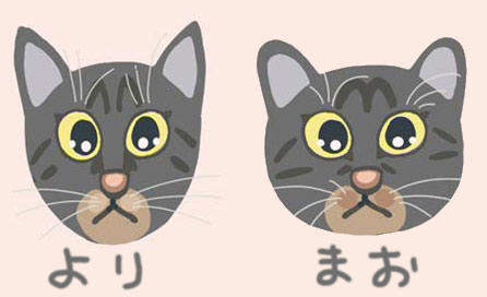 maoo_20101118152002.jpg