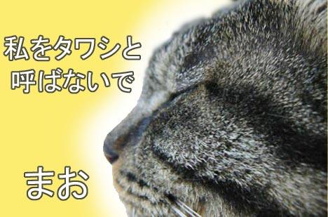 tawasi.jpg