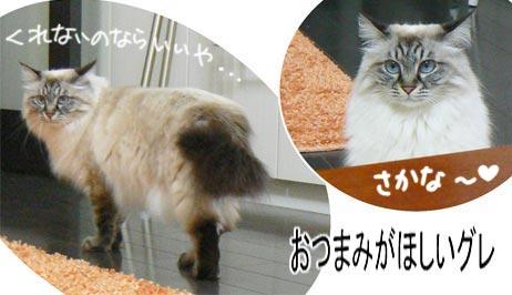 yobanaide.jpg