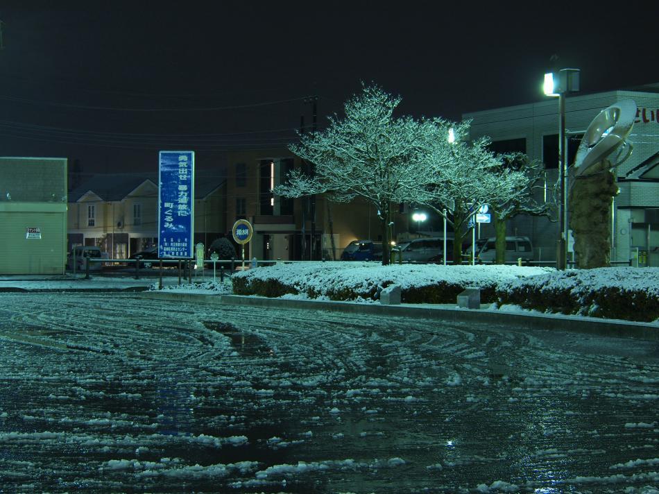 埼玉に雪が積もった日 8