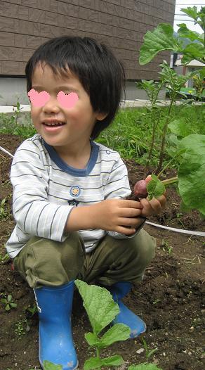 20100713_hatsuka_4.jpg