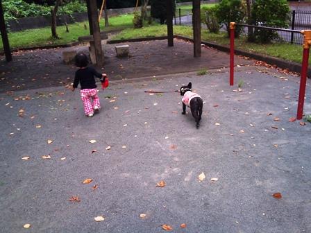 ほたる姉ちゃんと散歩