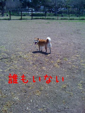 IMG_0409.jpg