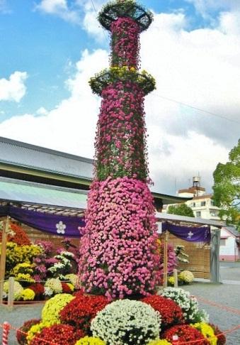 亀戸天神菊まつり1
