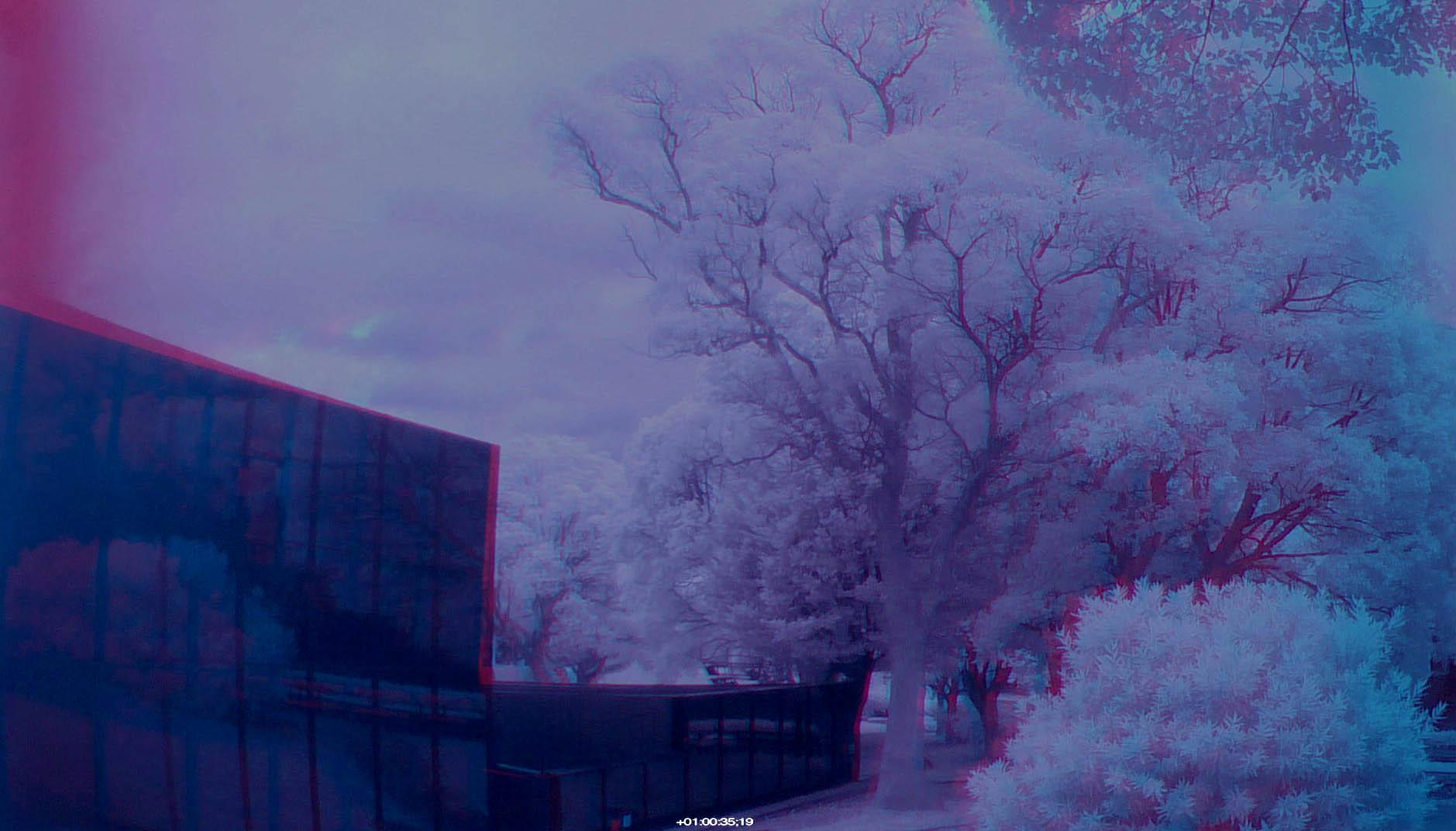 140924screen尾倉公園IRをアナグリフ化-1
