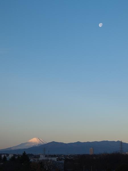 初富士と月