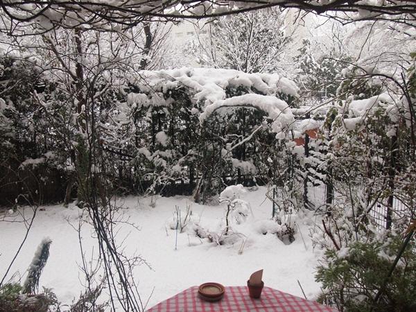 大雪の庭1