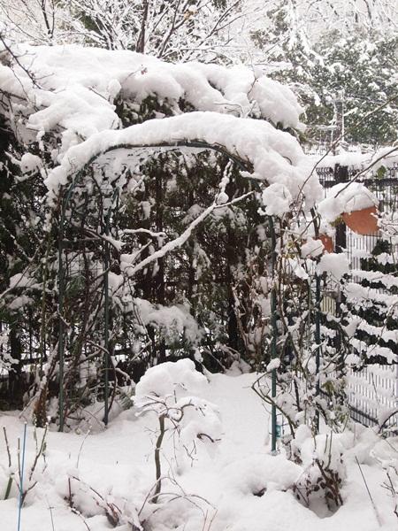 大雪の庭2