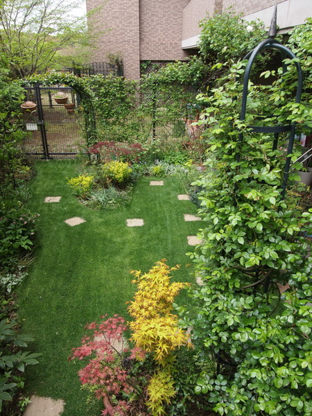 緑溢れる横浜の庭