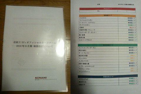nise_kaitei1.jpg