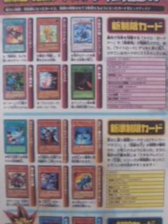 nise_kaitei3.jpg