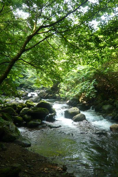 尚仁沢の川の流れ
