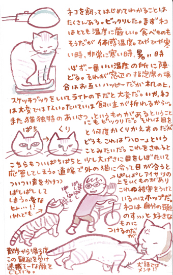 aisatuneko_001.jpg