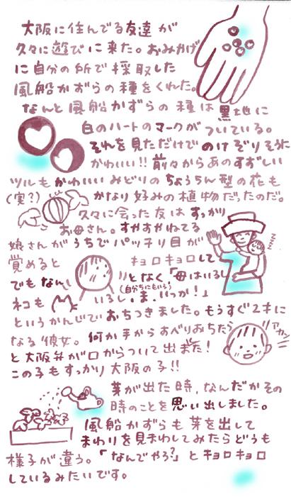kazura_001.jpg