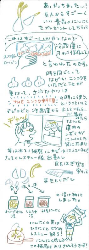 ninniku_001.jpg