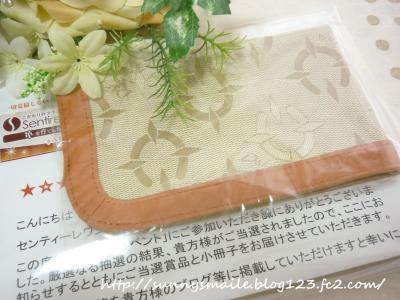 繝ャ繧カ繝シ_convert_20100916213034