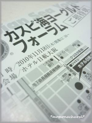 繧ォ繧ケ繝農convert_20101105211050