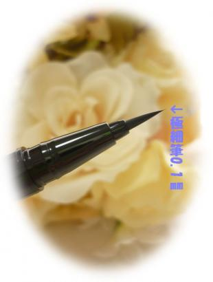 kako-nPFL7fuJpDwgJwbr_convert_20101221113518.jpg