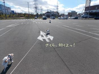 20141103_16.jpg