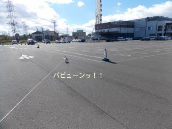 20141103_22.jpg