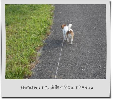 20141116_18.jpg