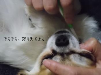 20141224_13.jpg