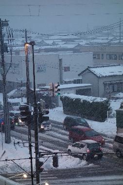 雪1209