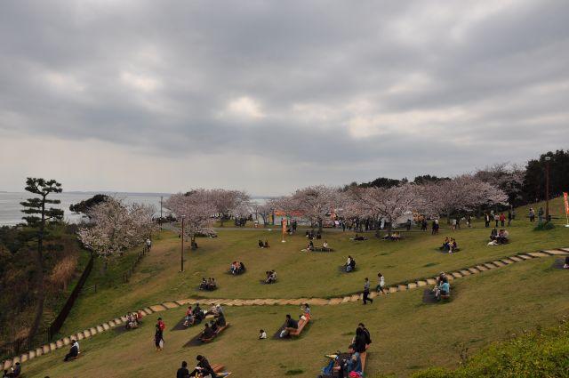 花よりだんごフェアin浜名湖サービスエリア