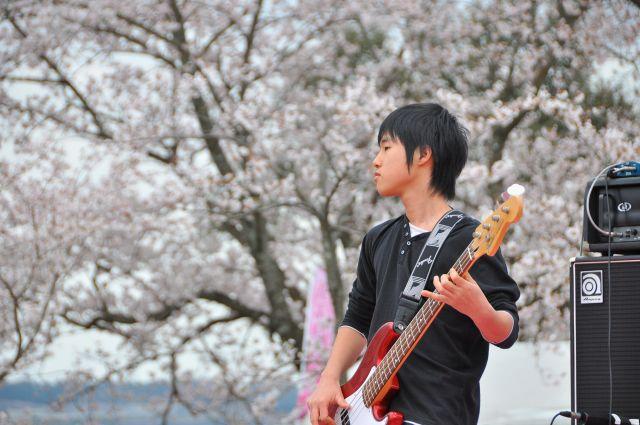 花よりだんごフェアin浜名湖サービスエリア 15