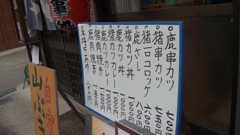 tanuki44.jpg